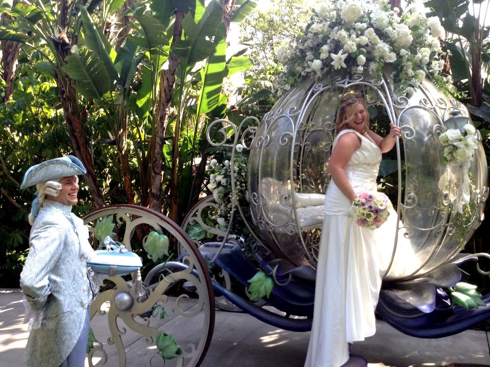 Another Fairytale Wedding Ceremony At Disney Great