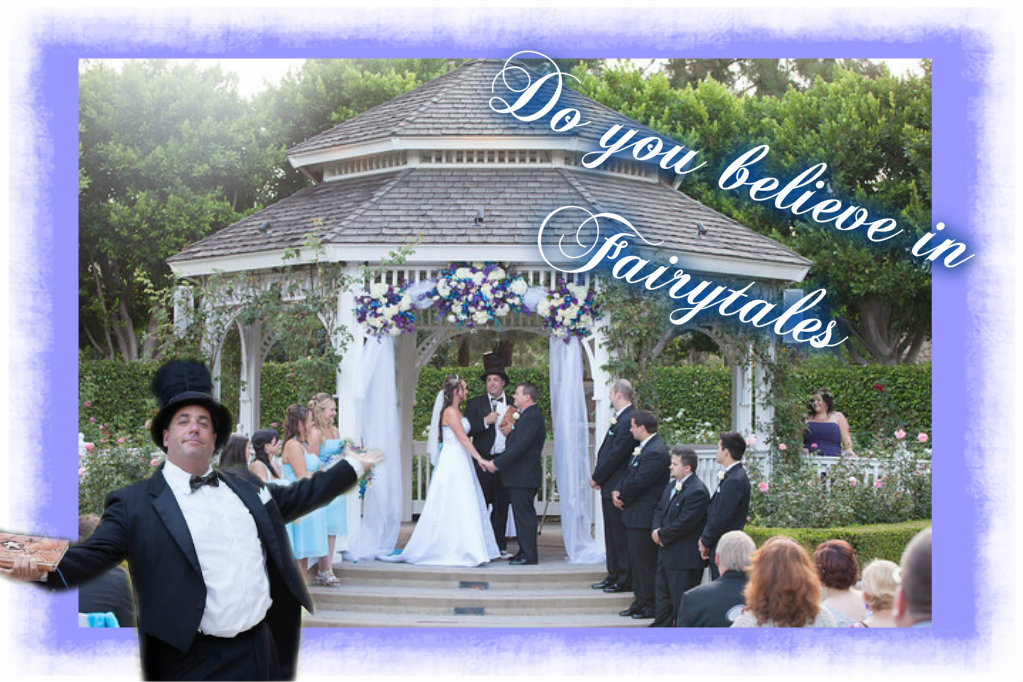 Cat In The Hat Wedding At Disney And Great Review On Wedding Wire